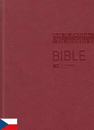 Bible ČEK s DT, veľký formát - bordová