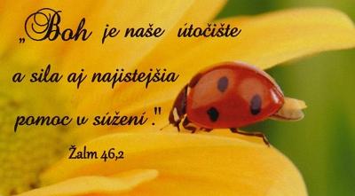 Magnetka: Boh je naše útočište…(lienka)